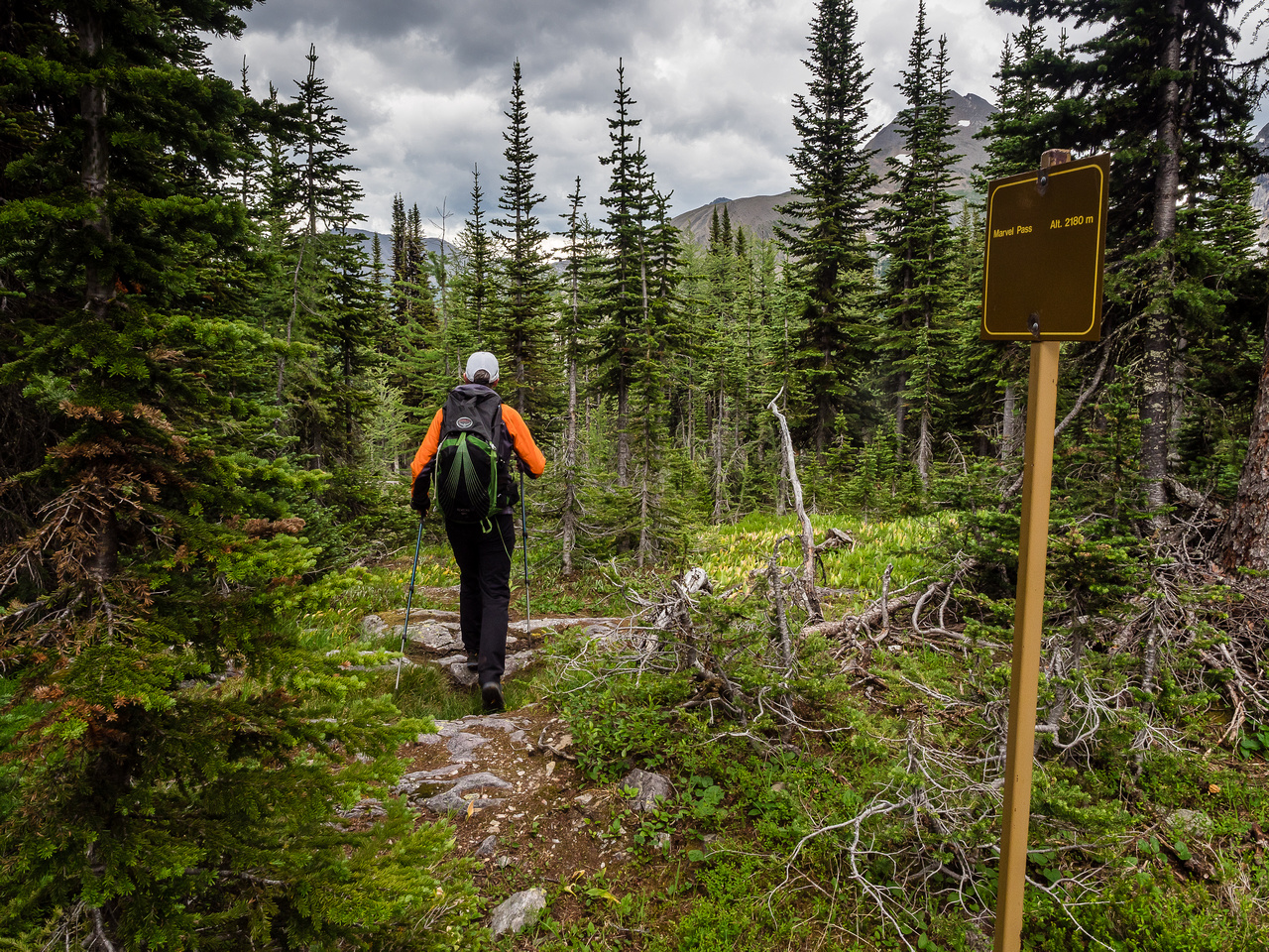 On return we found a much more efficient approach to Byng, but on approach we followed the Marvel Pass trail down towards Owl Lake for a bit.