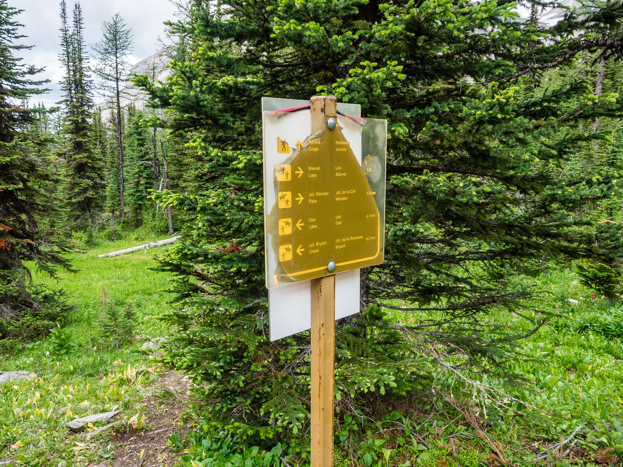 Chewed up sign showing different trails from the pass area including the traverse to Marvel Lake, Wonder Pass and Owl Lake.