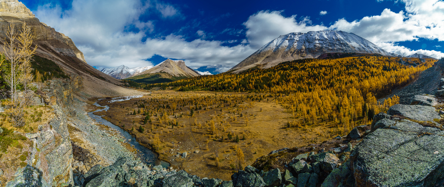 Looking down at the larch meadow from the top of the curtain wall with Skoki on the left and Fossil on the right.