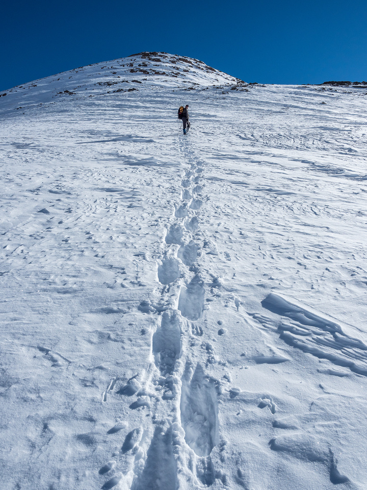 No more tracks from the col! Wietse breaks trail up to the summit.