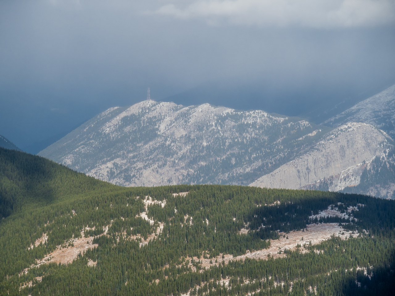 Crowsnest Ridge has avoided all the snow somehow - despite being closer to the Divide!