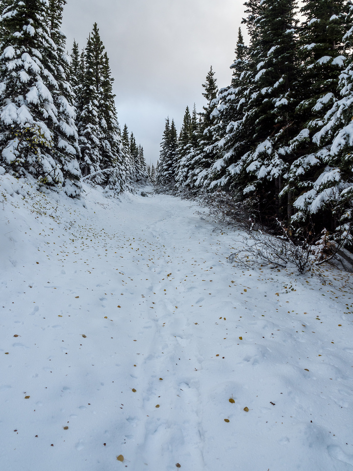 Now it's really starting to feel like winter! I guess the hiking and scrambling season is officially over for the year.