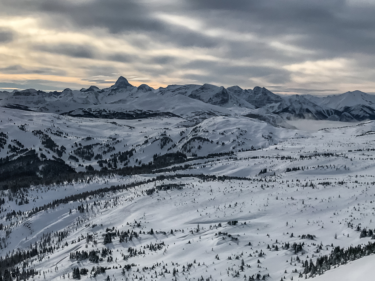 Looking over the lovely Sunshine Meadows to the south towards Mount Assiniboine with Quartz Hill in front and Simpson Ridge, Nestor and Indian Peaks
