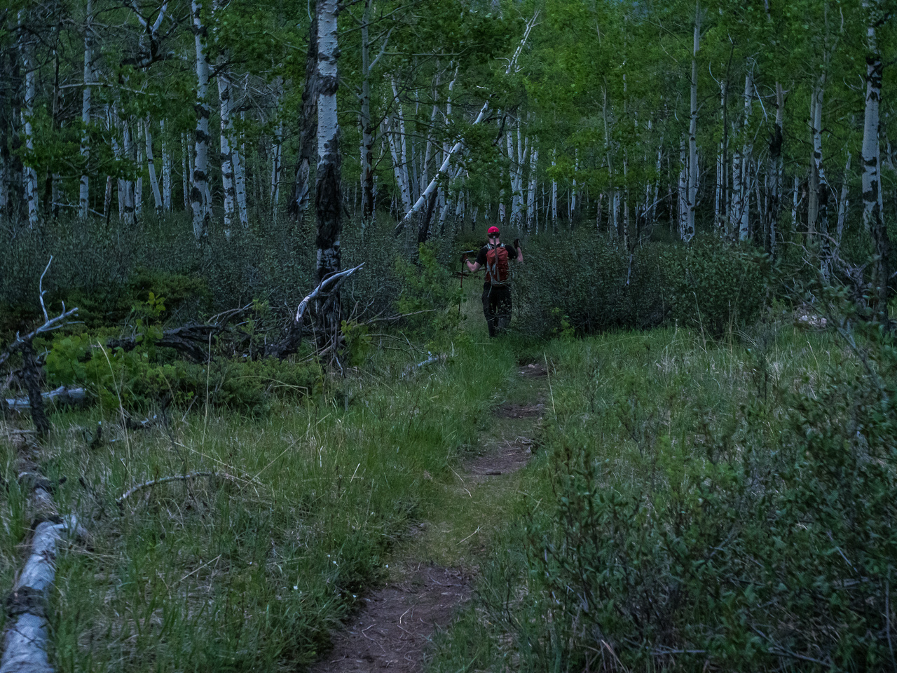 Heading towards the campground in fading light.