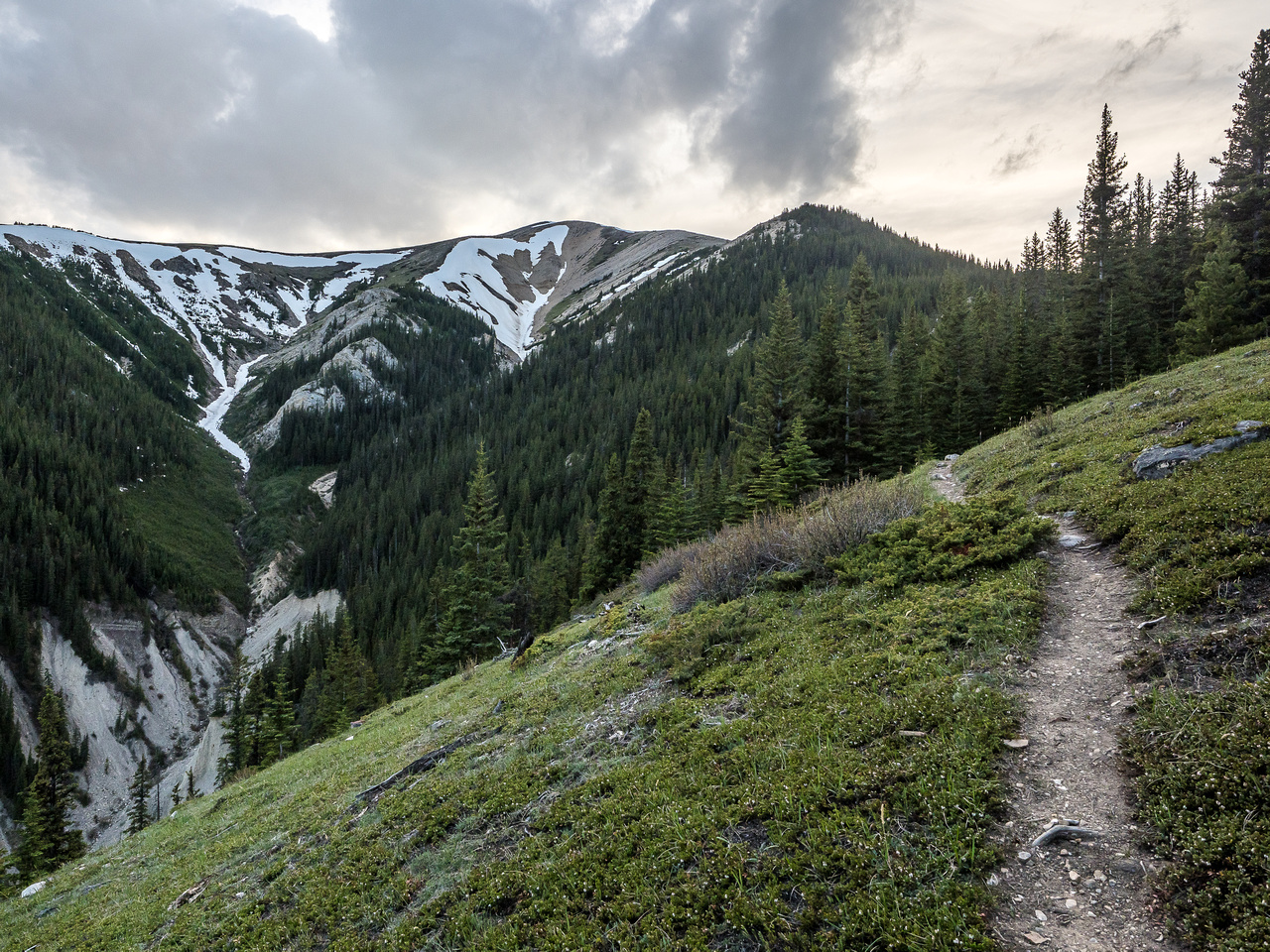 Looking back from the descent towards the summit. Two O'Clock Creek at lower left.