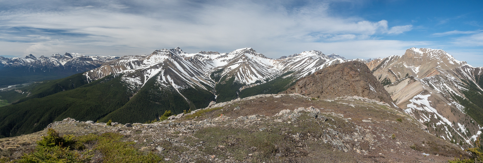 From L to R, Siffleur, Peskett, Whirlpool Ridge, Two O'Clock Ridge / Peak, Landslide Peak, Ernest Ross and Bridge Peak.