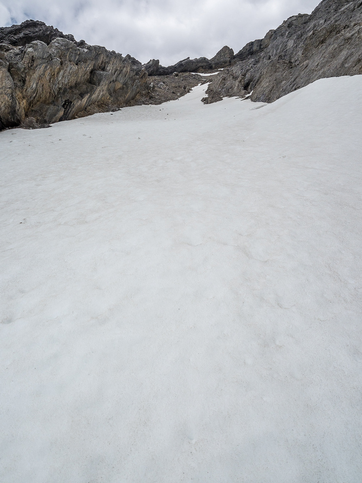 The snow patch is more of a snow field.