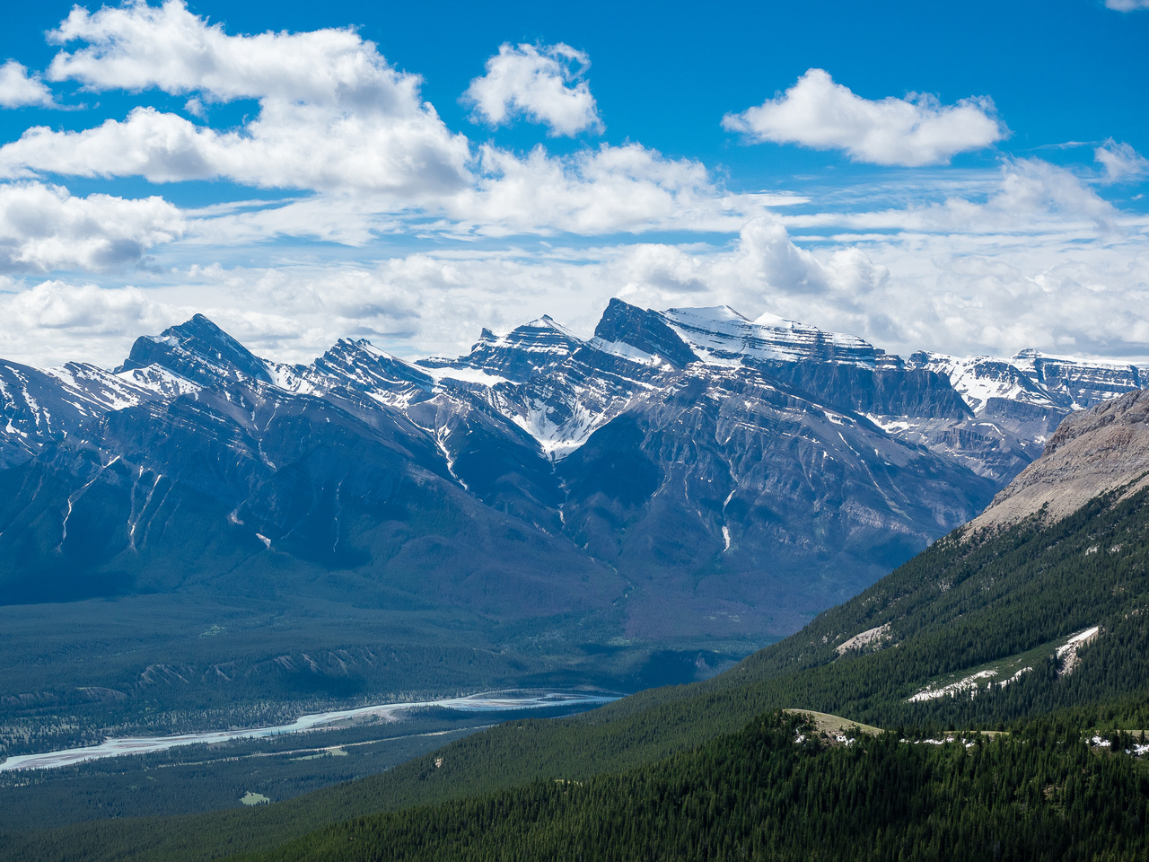 Views over the North Saskatchewan River towards Siffleur, Loudon  and Peskett (L to R) - giants in the Siffleur Wilderness.