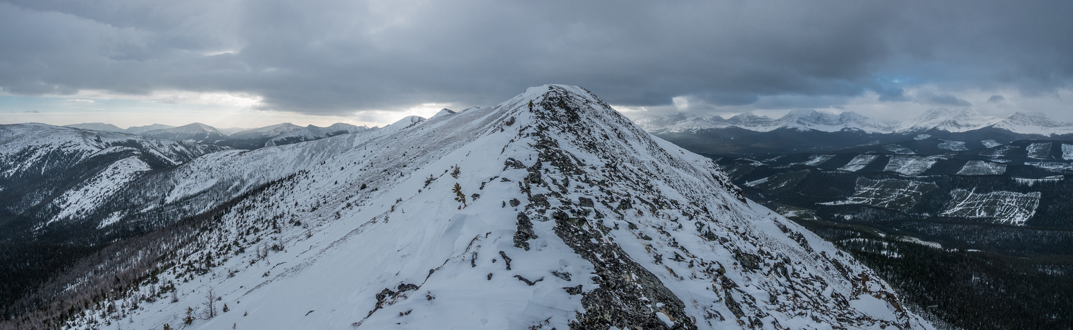 Peaks in the distance to the right of the ridge include Lyall, Beehive and The Elevators.
