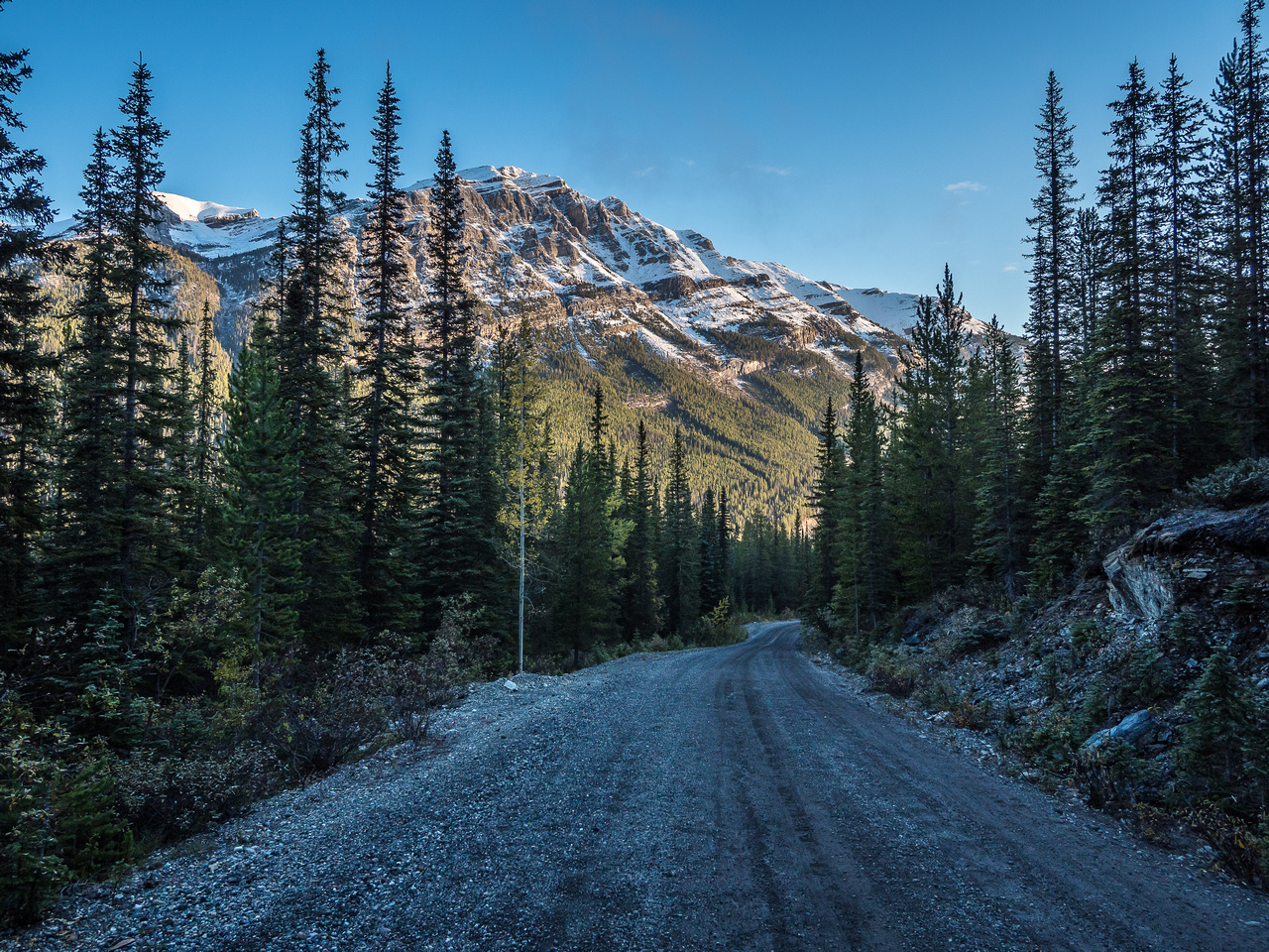 Looking back down the Lake O'Hara approach road at Mount Bosworth with a fresh coat of white. But it's already MUCH sunnier than the forecast promised so that's good.