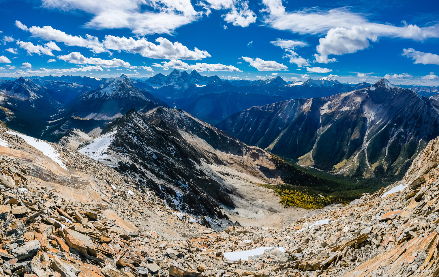 Great views into the McArthur Creek Valley with the Goodsirs at center distance and Owen at right.