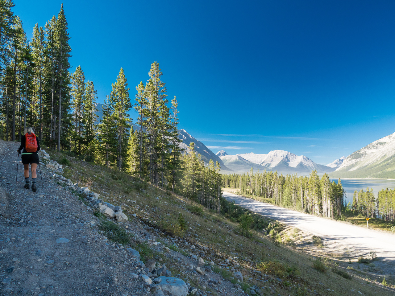 The trail is a highway from the Sparrowhawk Picnic area to the High Rockies Trail (HRT).