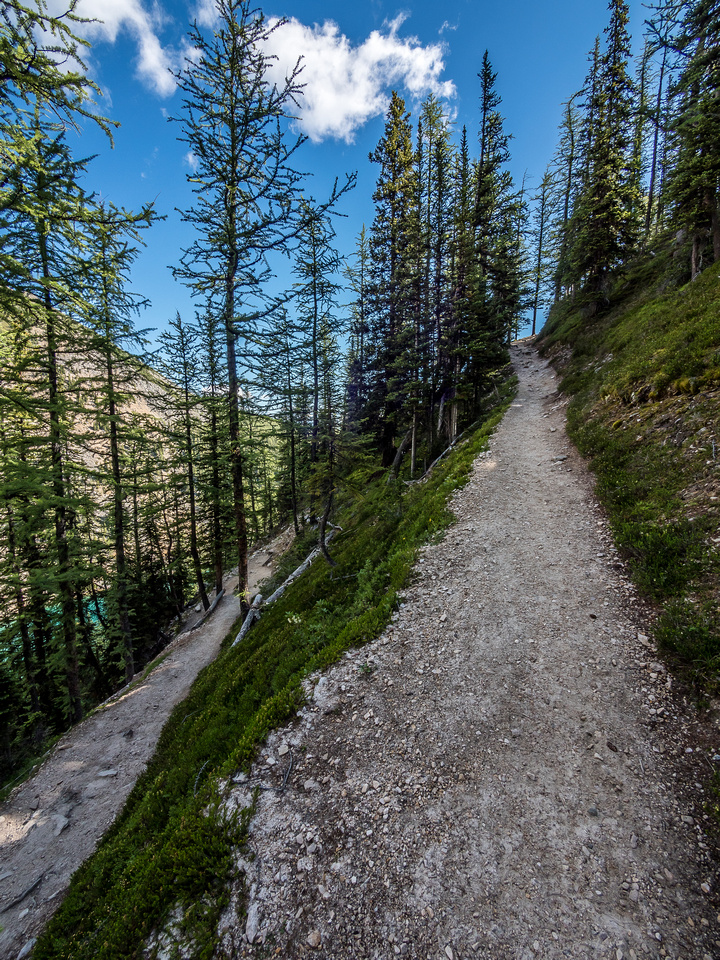 The steep trail to the col has many switchbacks.