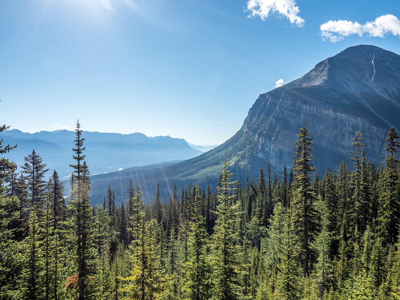 Looking across Lake Louise from the Lake Agnes trail towards Mount Fairview.