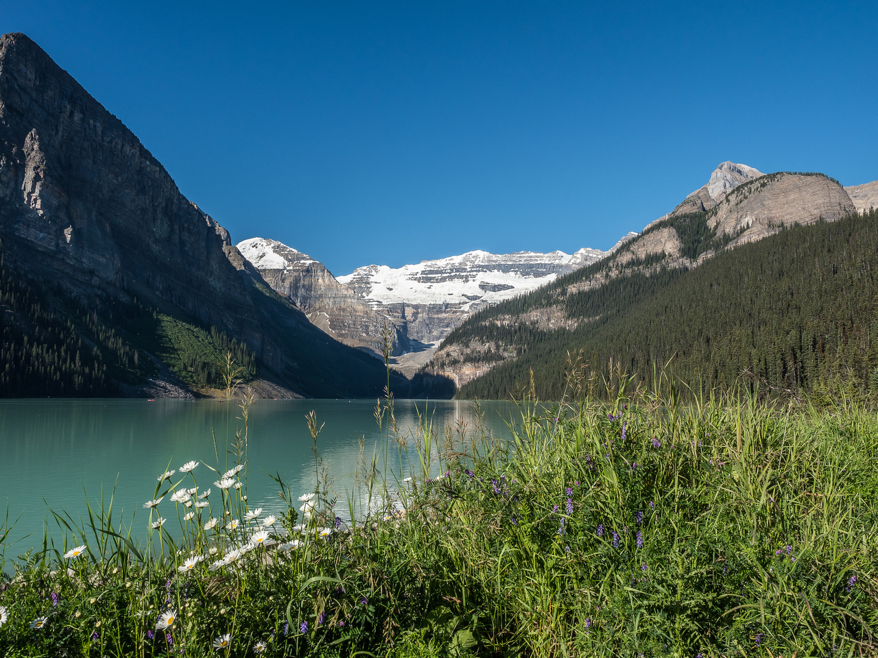 The iconic view of Lake Louise with Lefroy, Victoria, Devil's Thumb, Whyte and the Beehive (L to R) visible.