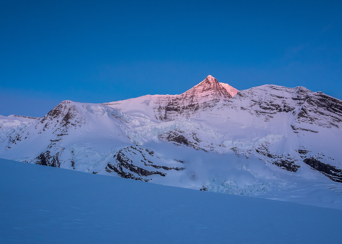 Mount Robson catches alpine glow as an ice avalanche thunders down the Robson Cirque in the foreground!