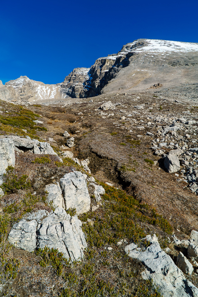 Looking up to the west summit. Those snow patches look close from here but they're not.
