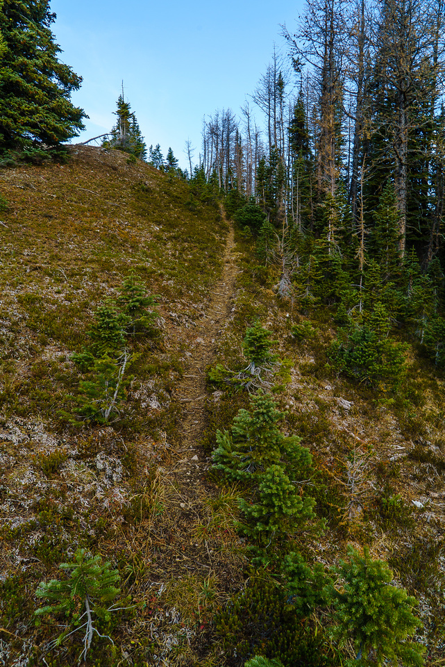 On the ridge, we follow an obvious trail up along the north side.