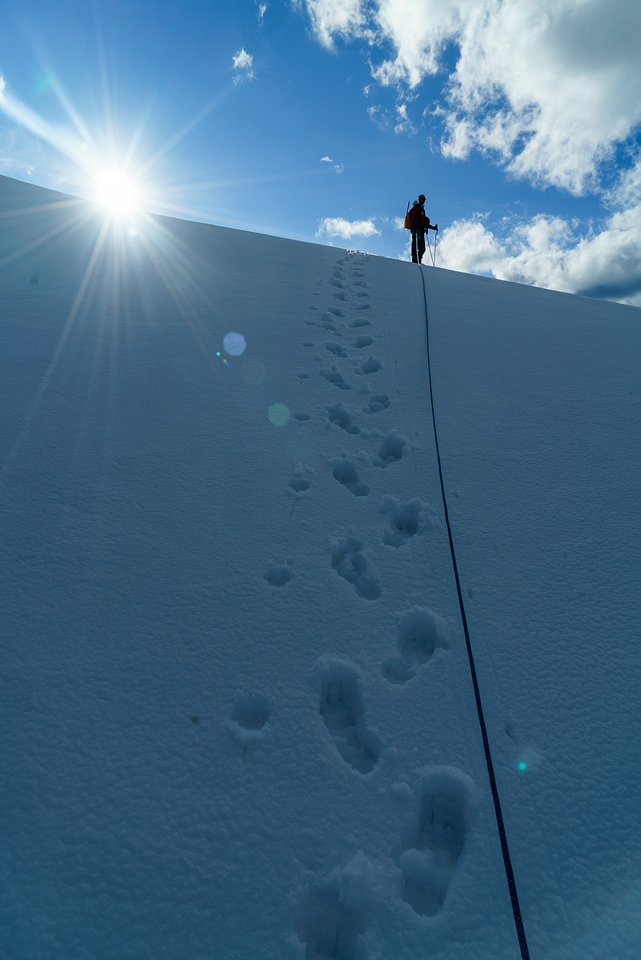 The sun and our slushy tracks as we head for Brazeau from camp.