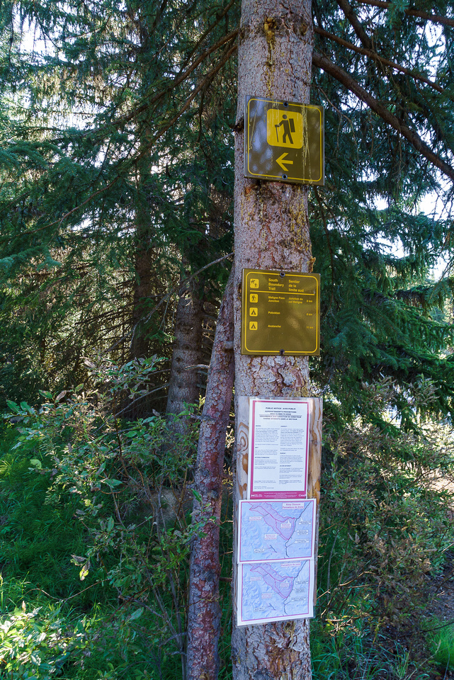 Lots of signage at the trailhead.