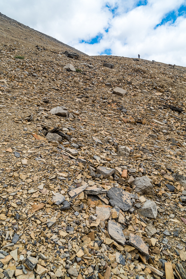 There's a bit of bench on this ridge traverse, but it's still side-hilling no matter how positive you try to make it sound.