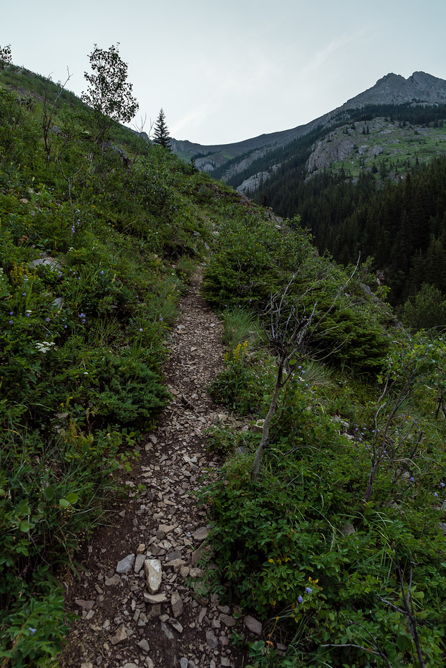 The trail is obvious in most places. The summit is on the upper left and grade never really lets off - this is a steep hike!