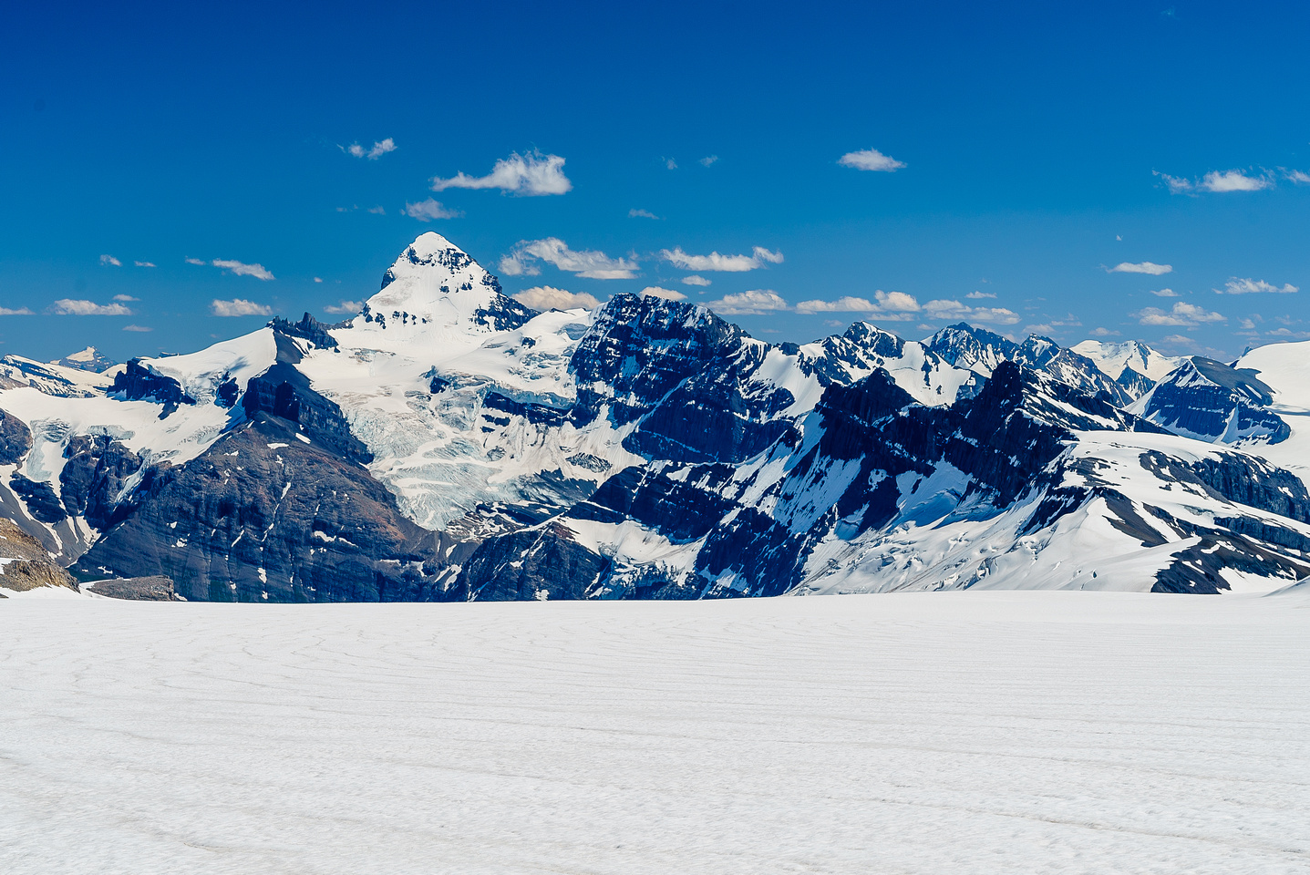 Looking back down the main Lyell Glacier at Mount Forbes.