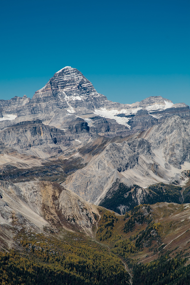Mount Assiniboine rises dramatically over White Man Pass.