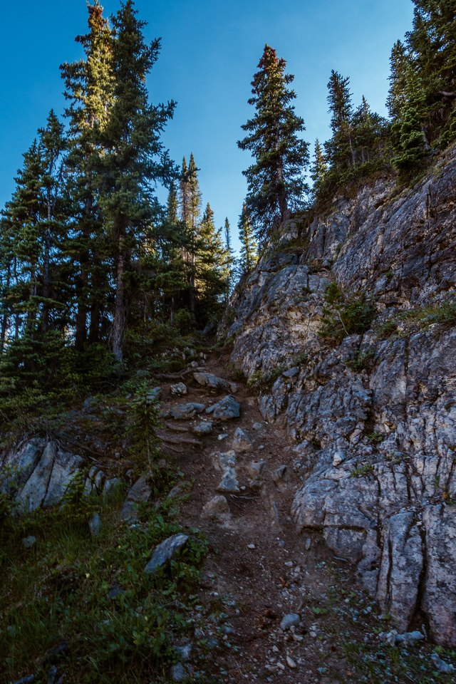 An unexpected, fun trail down from Iceberg Lake!