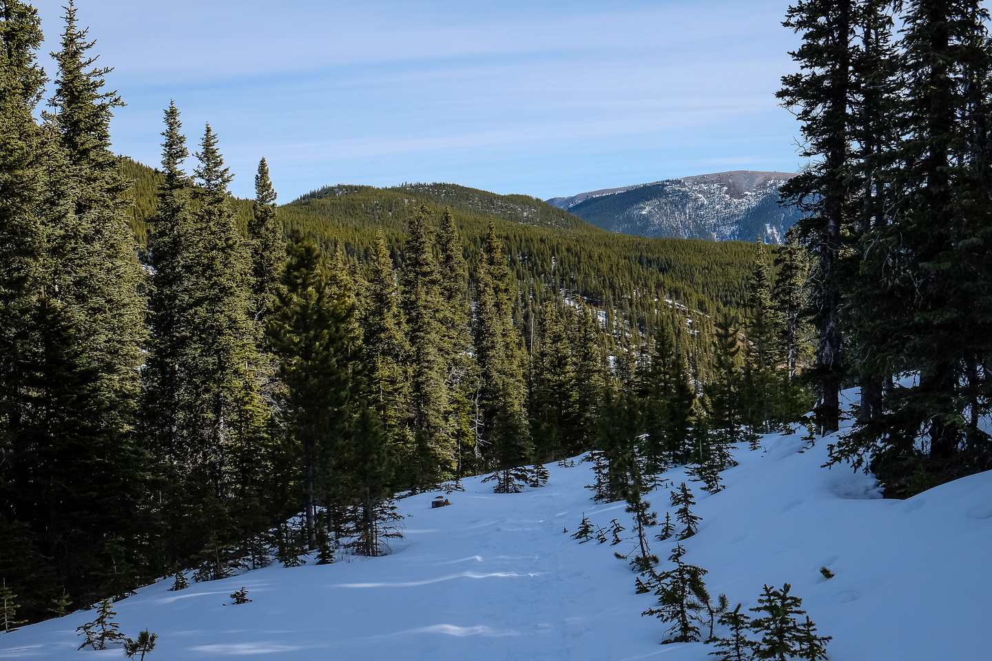 As the trail approached the pass it got steeper. This is looking back at Prairie Mountain.