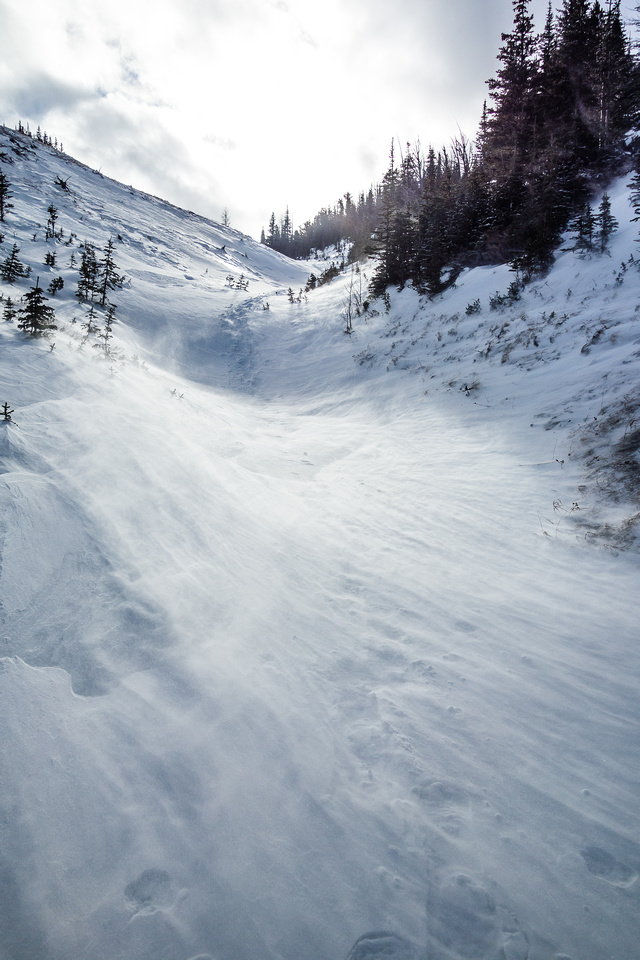 My tracks descending the alternate gully.