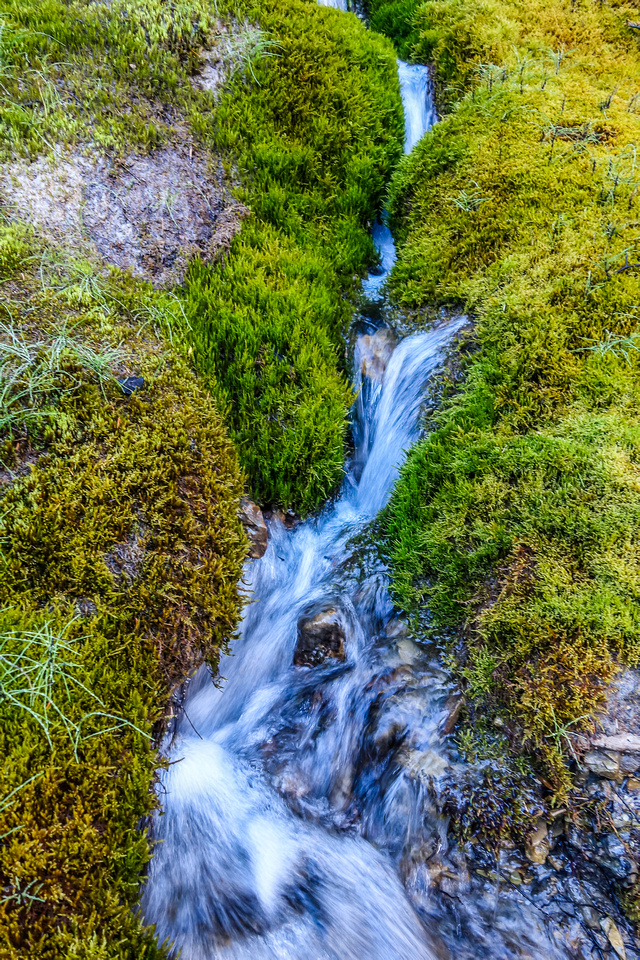 SE Amery Creek is feed by many beautiful feeder streams coming off the glaciated unnamed summits to the south.