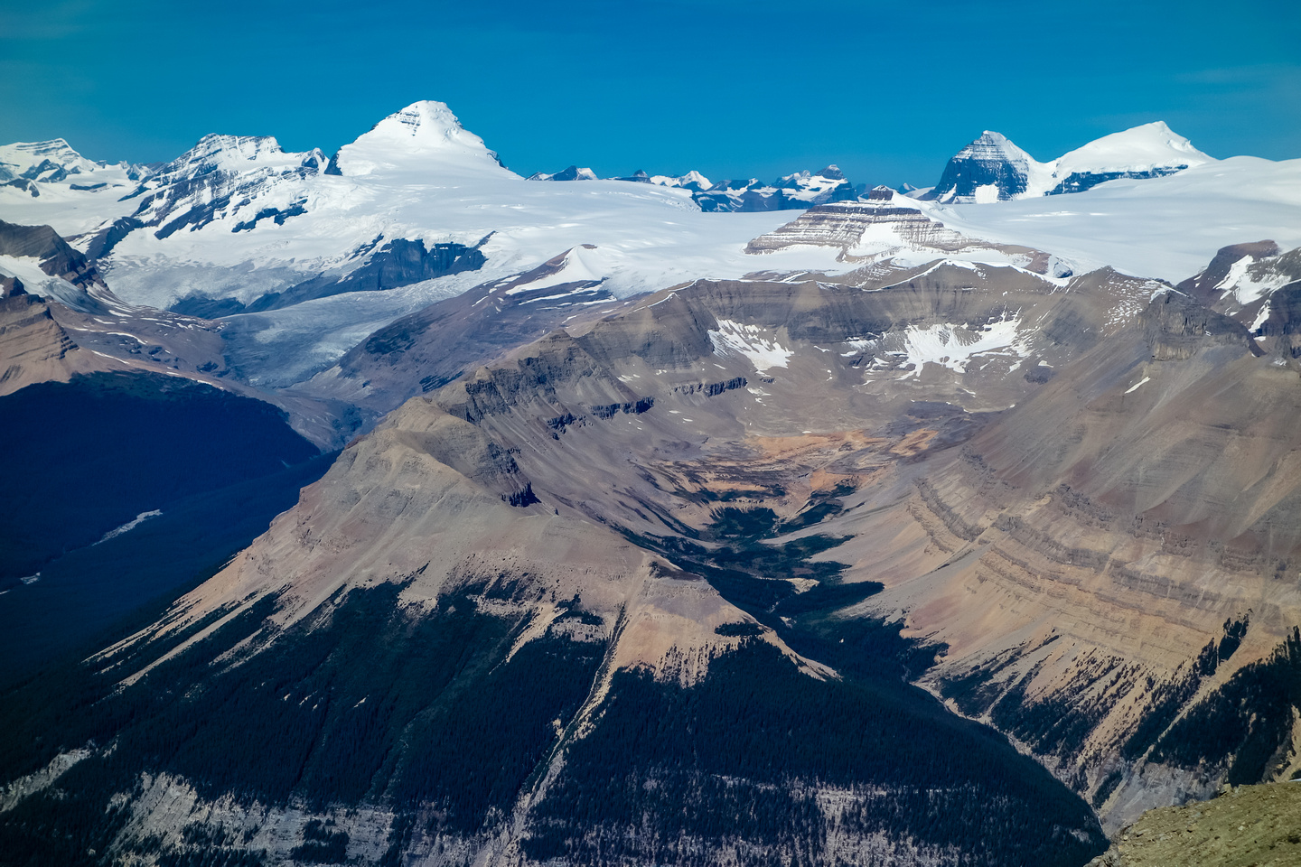 Clemenceau, King Edward, the mighty Mount Columbia (L), tiny Castleguard in the foreground and the always impressive South and North Twin in the background.