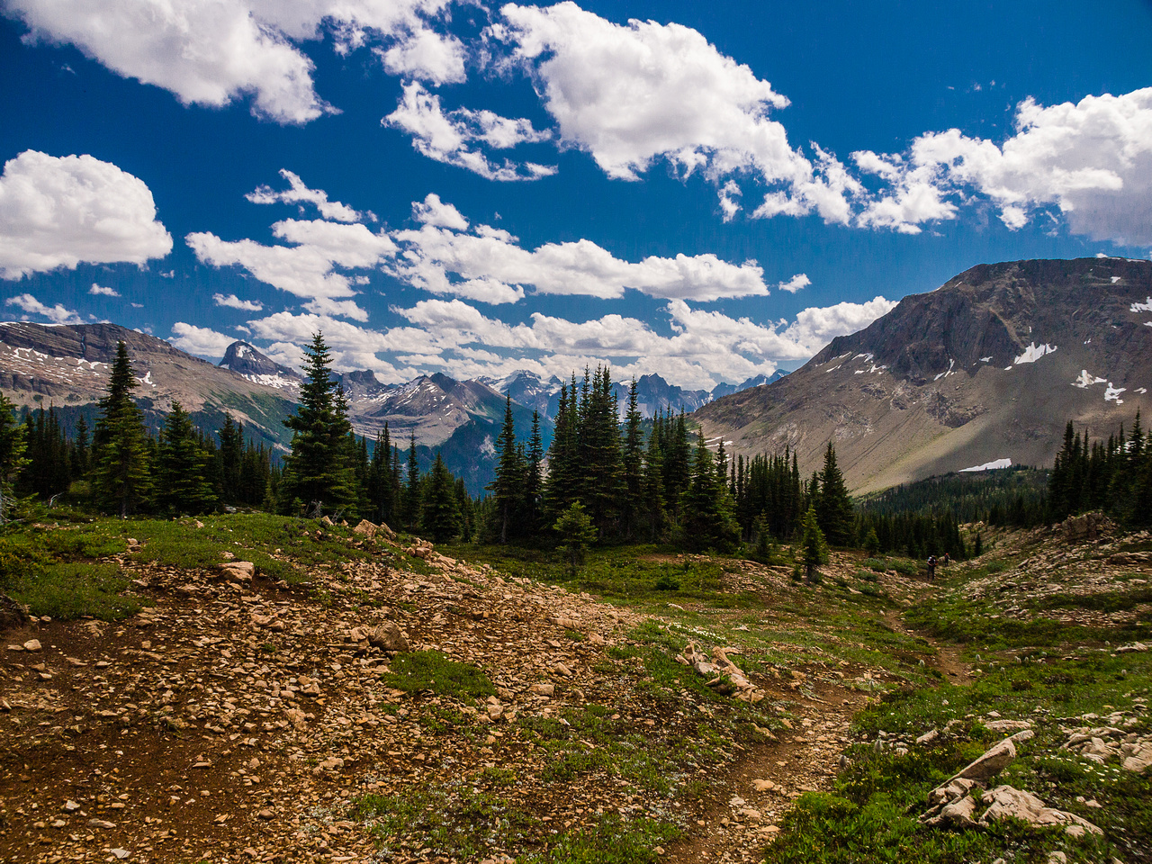The trail is much less defined higher up as we approach tree line - this is looking back down valley.