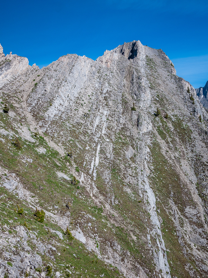Part of the traverse that bypasses some difficult terrain above on the left.