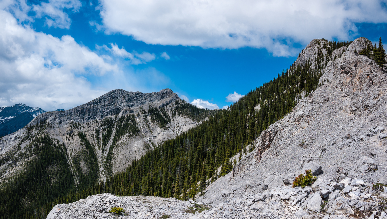 Descending to Baldy Pass, looking back at the ridge (R) and West Baldy (C).