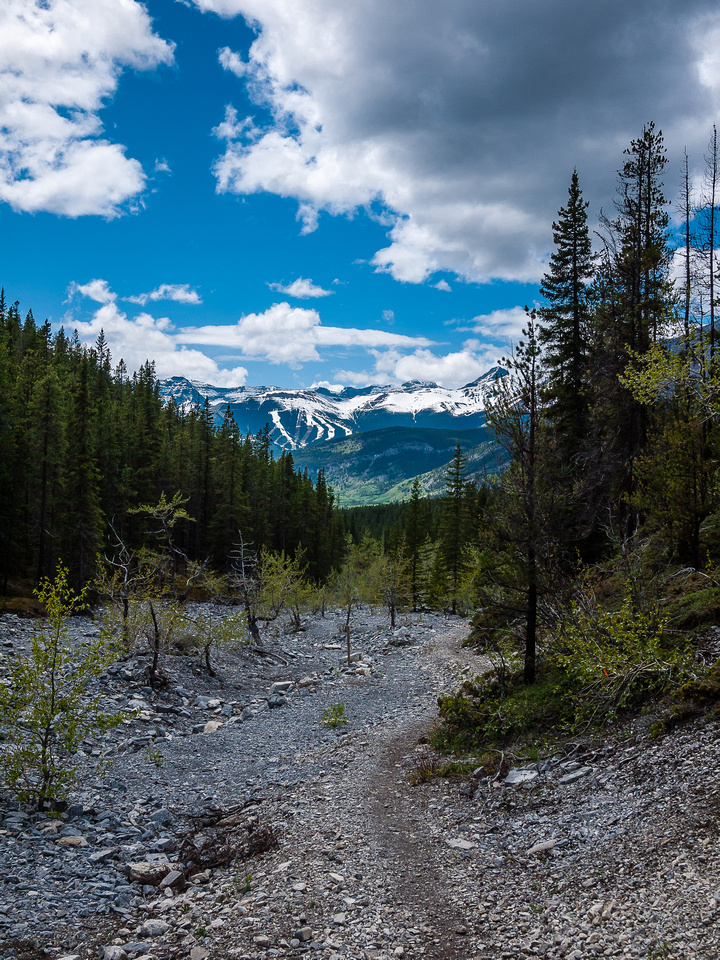 Following the Baldy Pass trail back to highway 40.