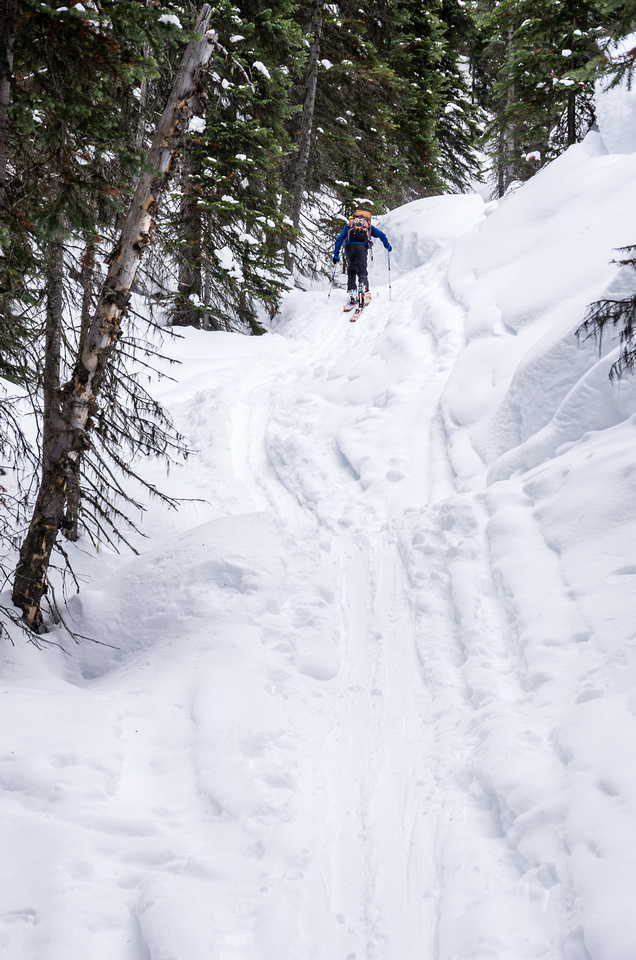 So struggles up the steep access gully to the pass. Some people go left of this gully on a treed ridge but the gully is relatively safe.