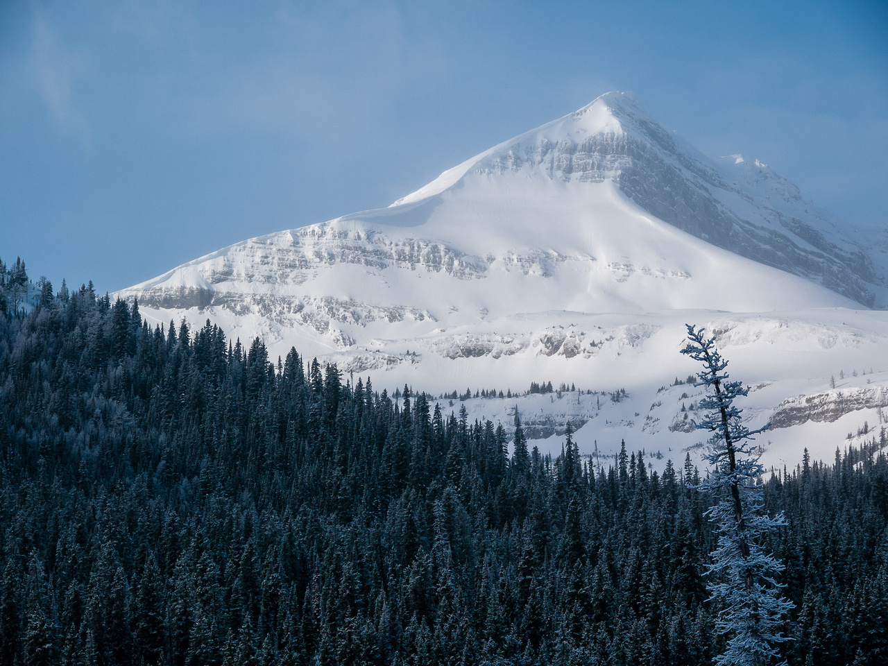 Snow Peak rises over Burstall Pass.