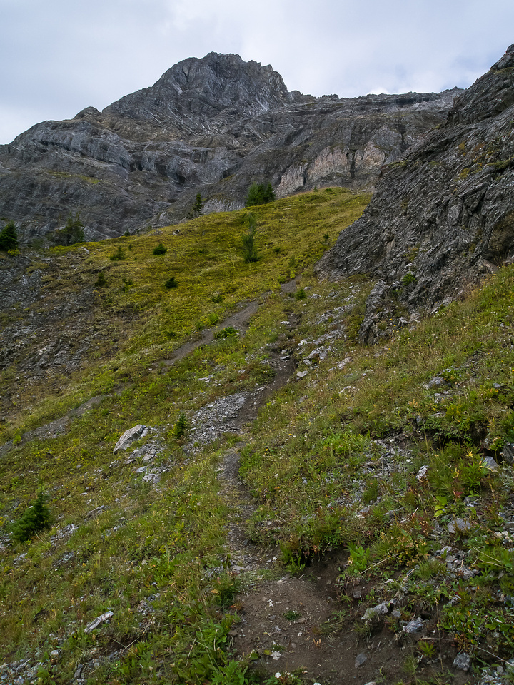 A trail leads up from the col to the summit ridge.