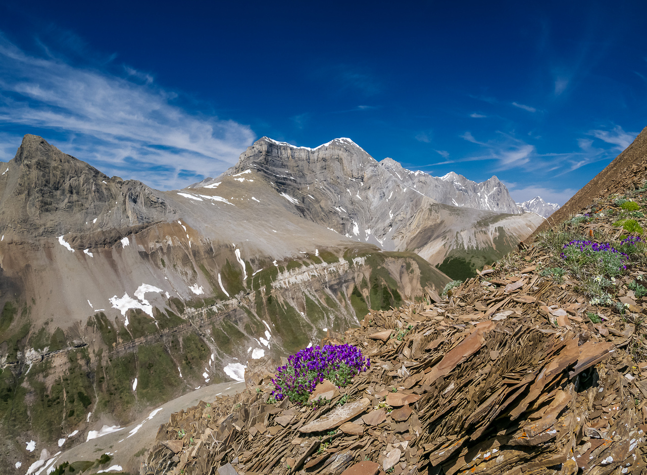 Awesome scenery continues on the brown shale. This is looking towards the Palliser Range which only has one named summit