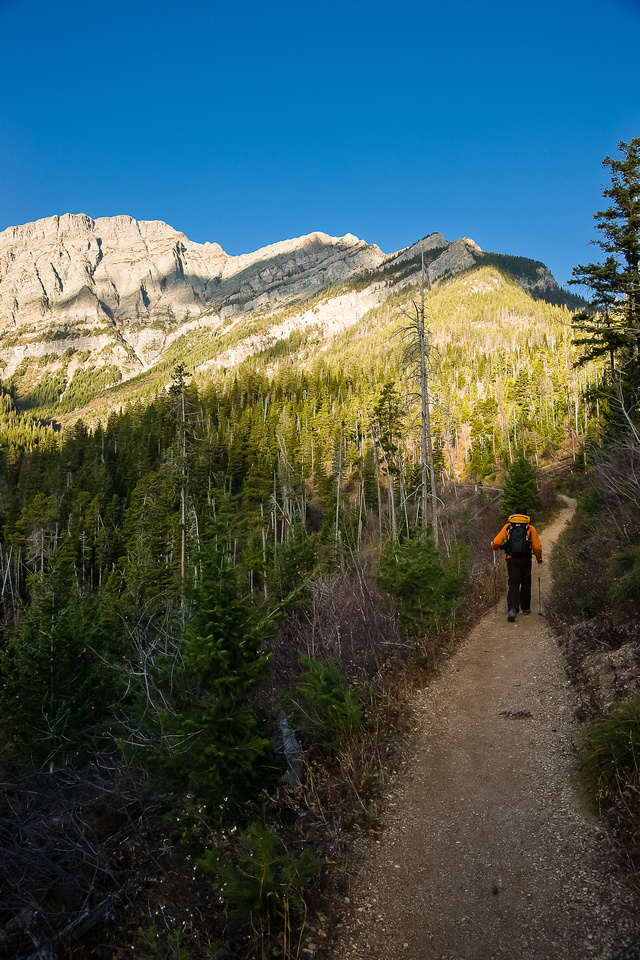 The Bertha Lake trail is steep and unrelenting but very quick.
