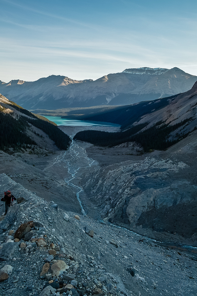 Looking back down the moraine to Peyto Lake.