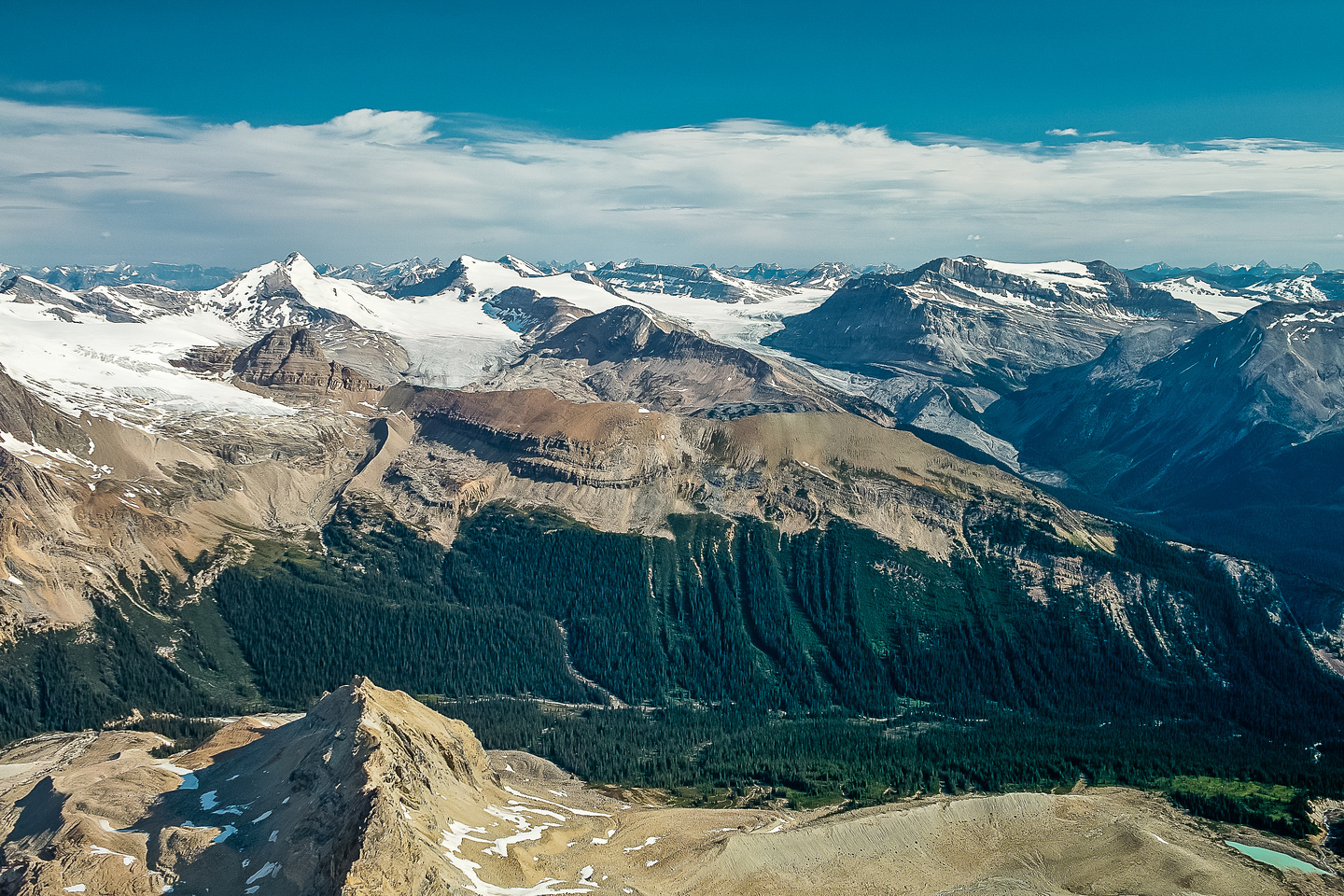 Views over the Little Yoho River and the Whaleback towards the Wapta Icefield.