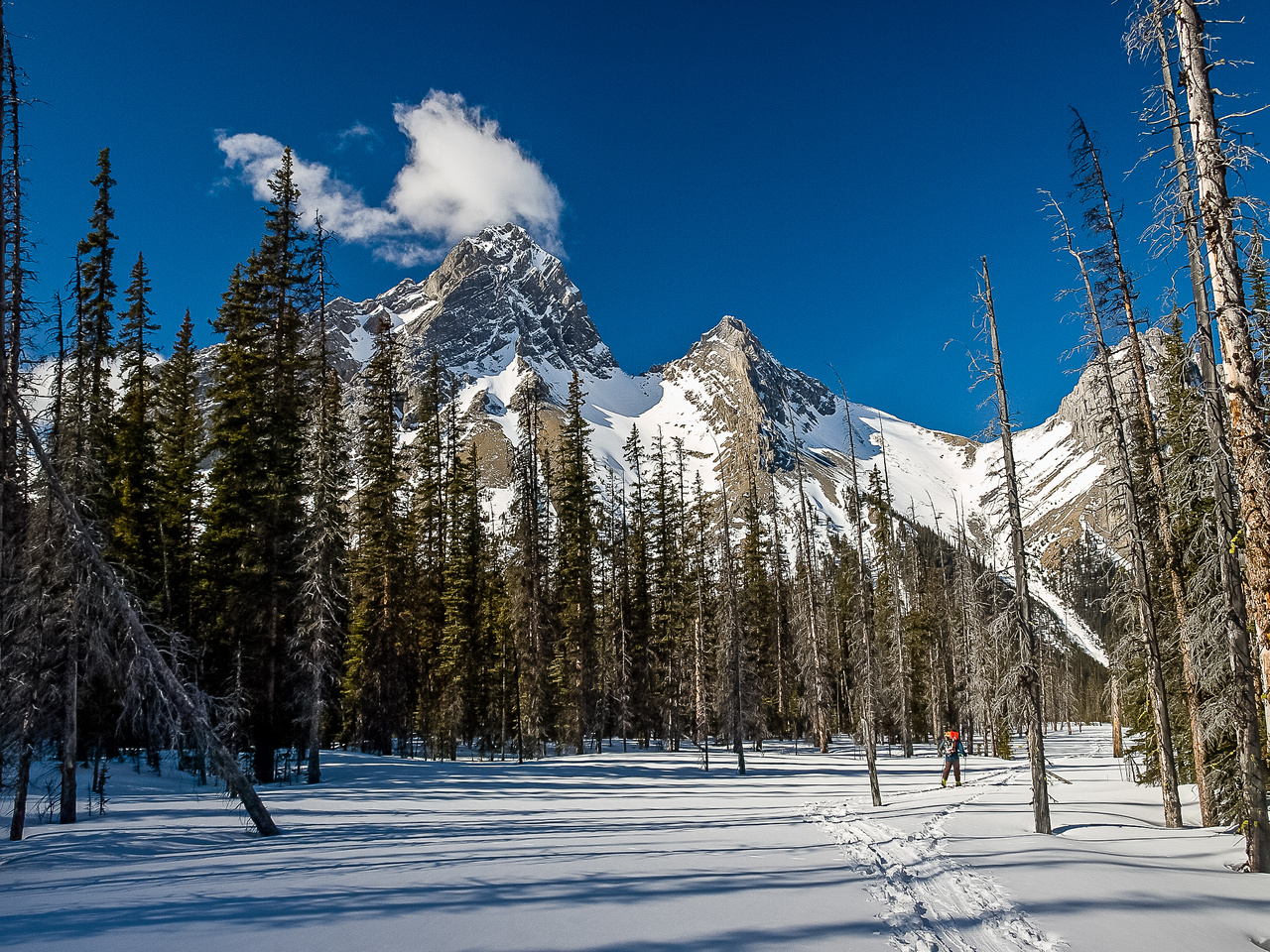 Skiing out of the Burstall flats.