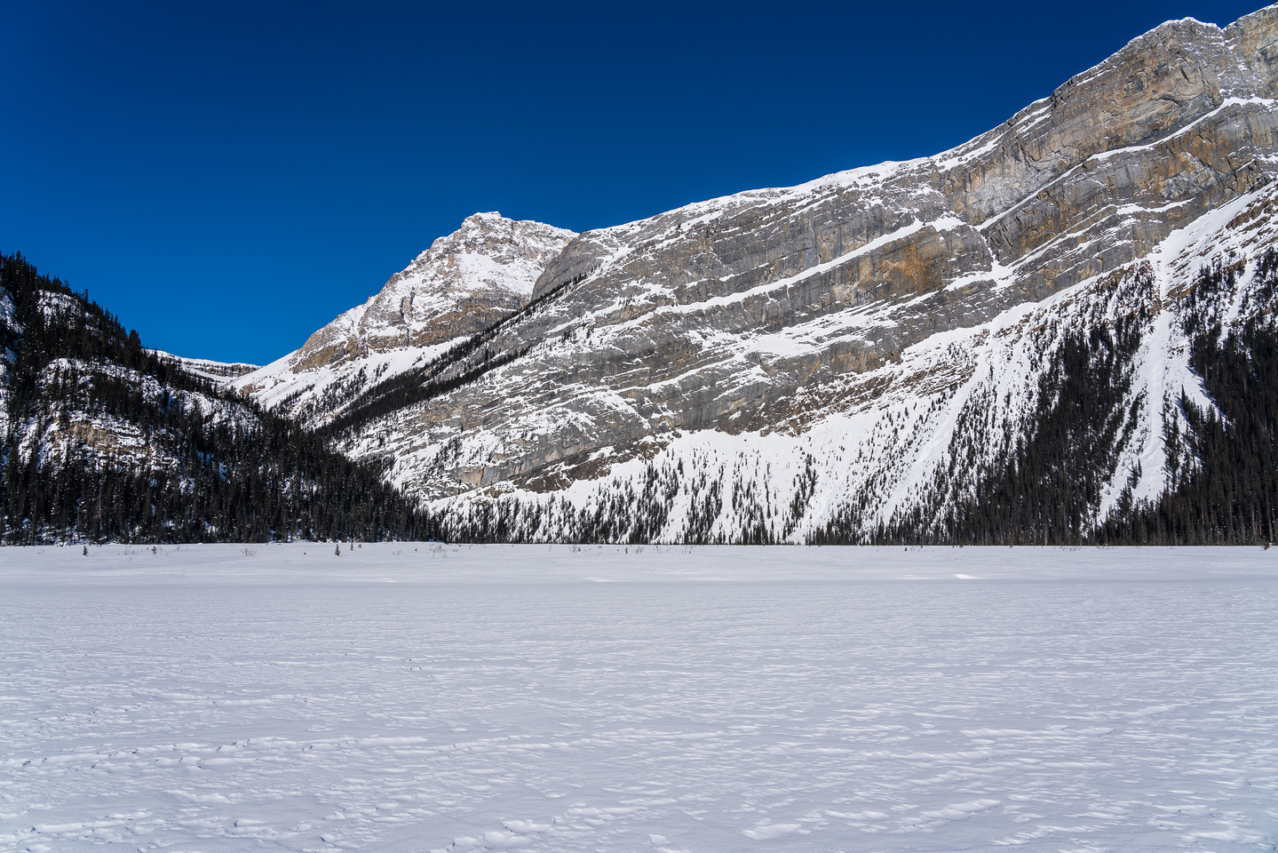 Finally approaching the Balfour Creek flats at the west end of Hector Lake.