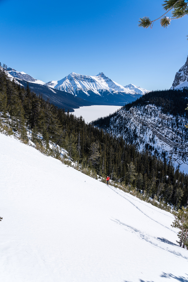 Mike follows my tracks up a wider avalanche path. Hector Lake in the bg.