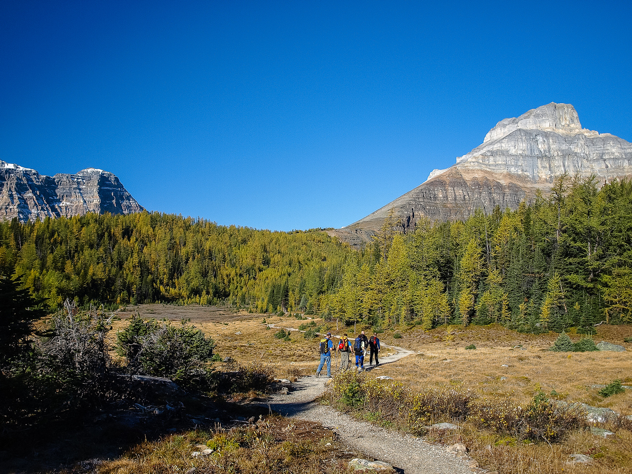 It's going to be a great day! This view is of another gorgeous peak in the Valley of Ten Peaks - Eiffel.
