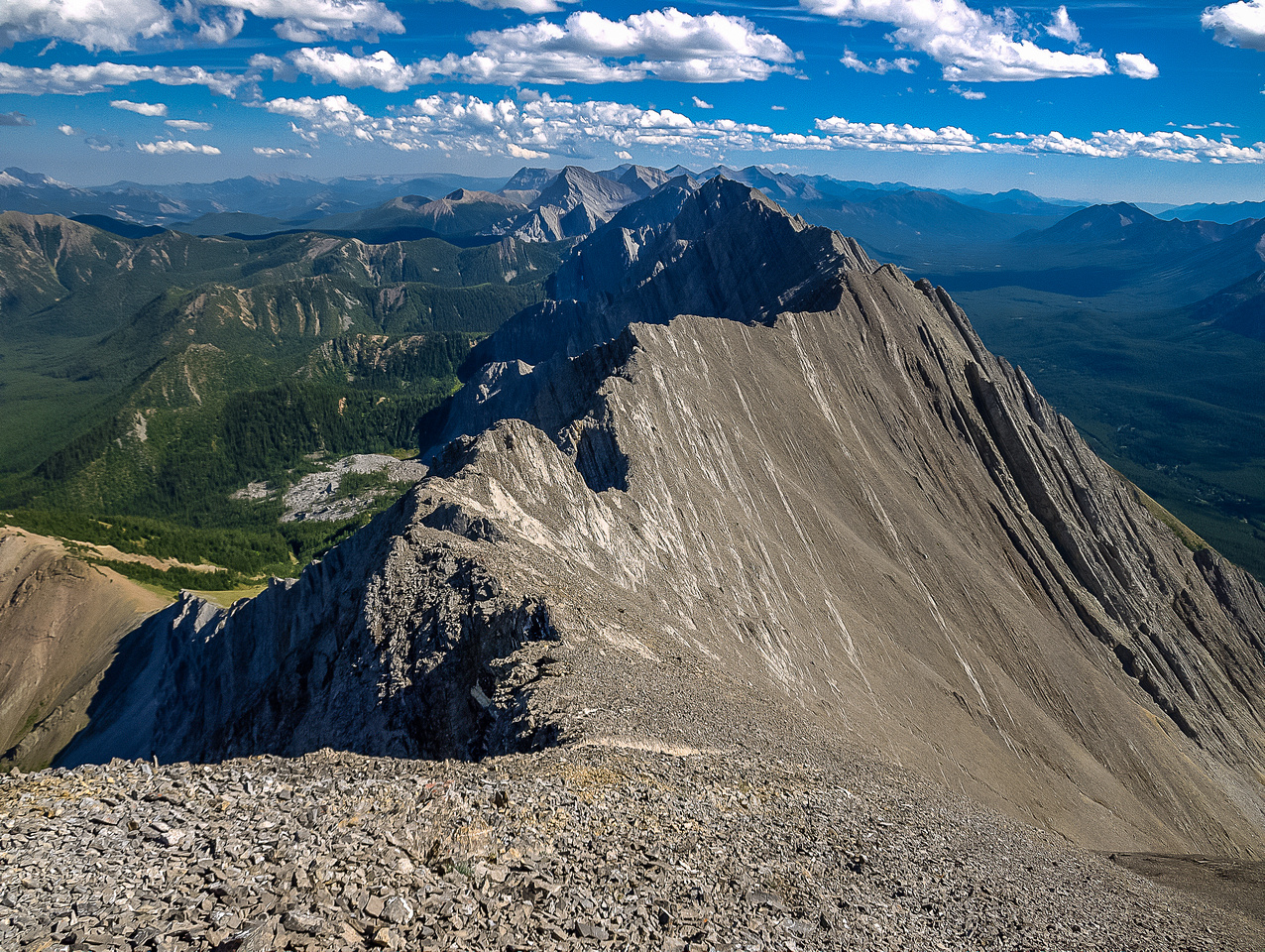 Looking back at Raf (somewhere in this photo!) and along the spine of the Elk Range and the North American continent.