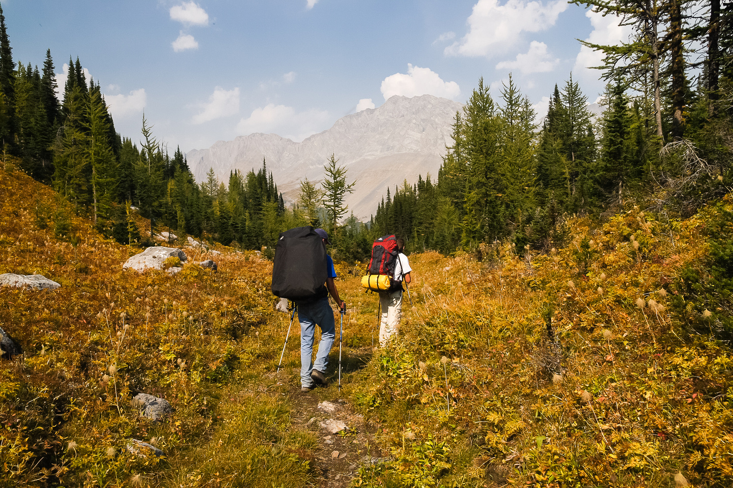 Our heavy backpacks are back on! Heading down to the main trail to Three Isle Lake.